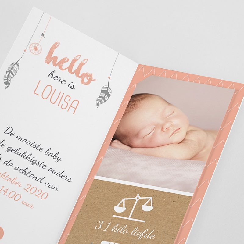 Geboortekaartjes Meisje Girly dromenvanger pas cher
