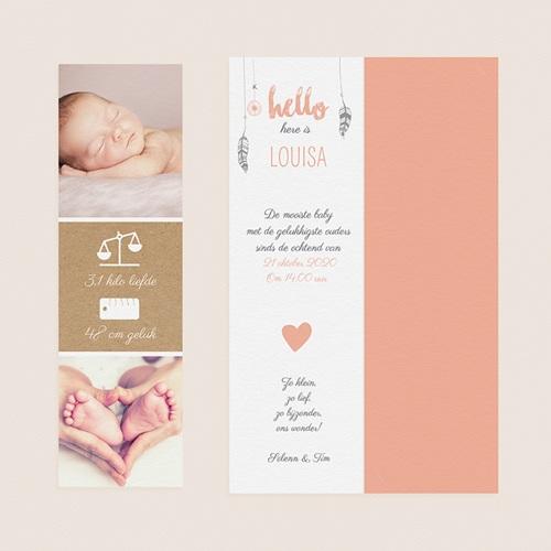 Geboortekaartjes Meisje Girly dromenvanger gratuit