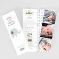 Geboortekaartje jongen - Elephant Duo 51857 thumb