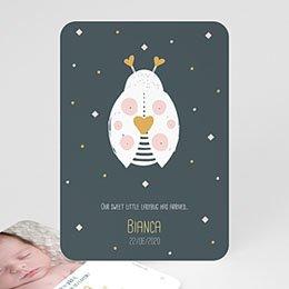 Aankondiging Geboorte Weinig Lieveheersbeestje