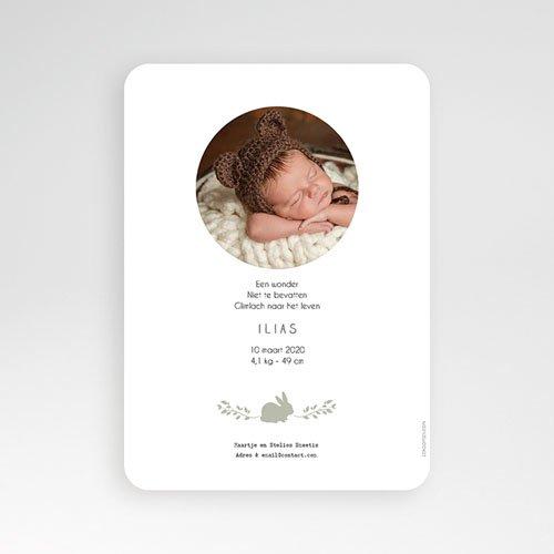 Geboortekaartje jongen - Vintage Konijn 52933 thumb