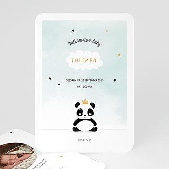 Geboortekaartjes met beesten - Panda Boy - 0