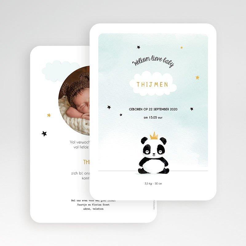 Geboortekaartjes Dieren - Panda Boy 53029 thumb