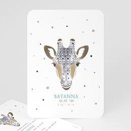 Aankondiging Geboorte Giraffe