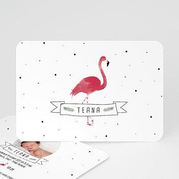 Geboortekaartje meisje - Flamingo girl - 0
