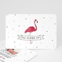 Aankondiging Geboorte Flamingo girl