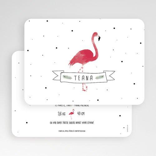 Geboortekaartje meisje - Flamingo girl 53607 preview
