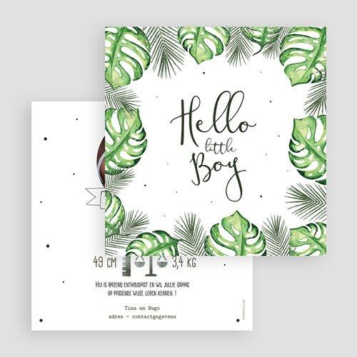 Geboortekaartje jongen - Tropical leaves 53625 thumb