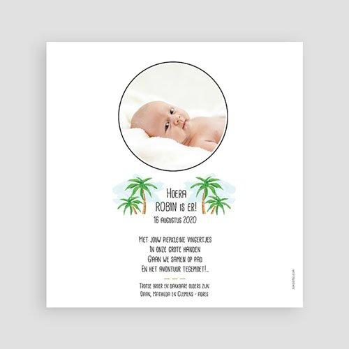 Geboortekaartje jongen - Zomer avontuur 53633 thumb