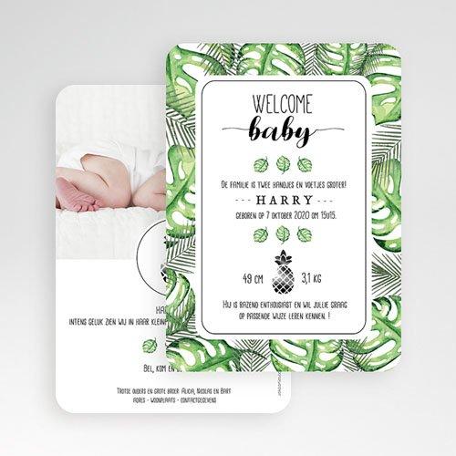Geboortekaartje jongen - Tropische plant en Ananas 53643 thumb