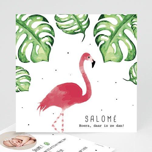 Geboortekaartje meisje - Flamingirl 53804 thumb