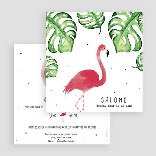 Geboortekaartje meisje - Flamingirl 53806 thumb