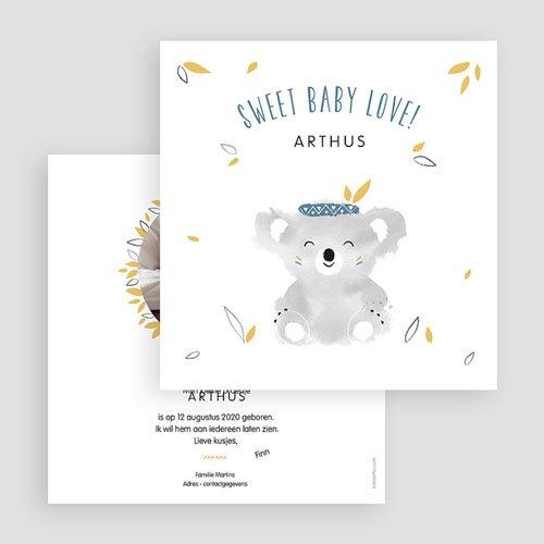 Geboortekaartje jongen - Koala blauw 53832 thumb