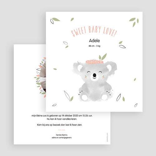 Geboortekaartje meisje - Koala roze 53841 preview