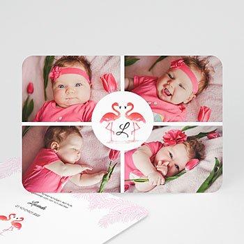 Geboortekaartje meisje - Flamingo addict - 0