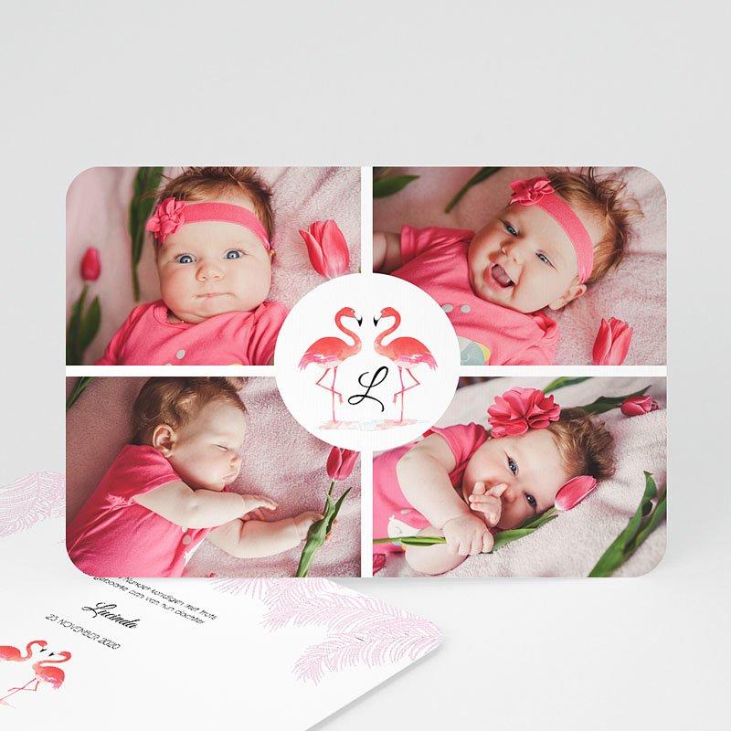 Geboortekaartje meisje Flamingo addict