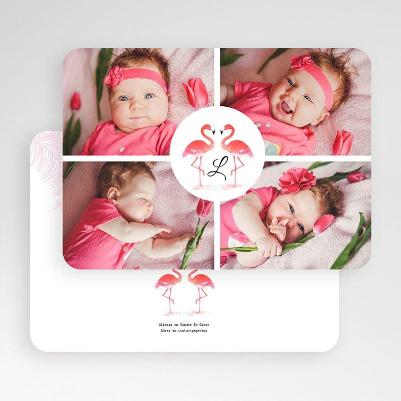 Geboortekaartje meisje Flamingo addict gratuit