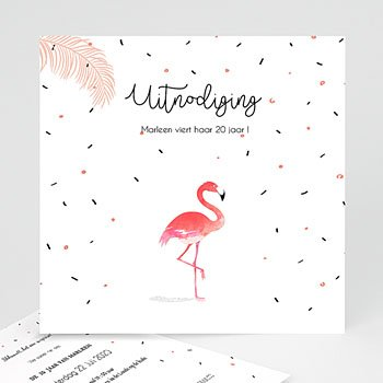 Verjaardagskaarten volwassenen - Let's flamingle - 0