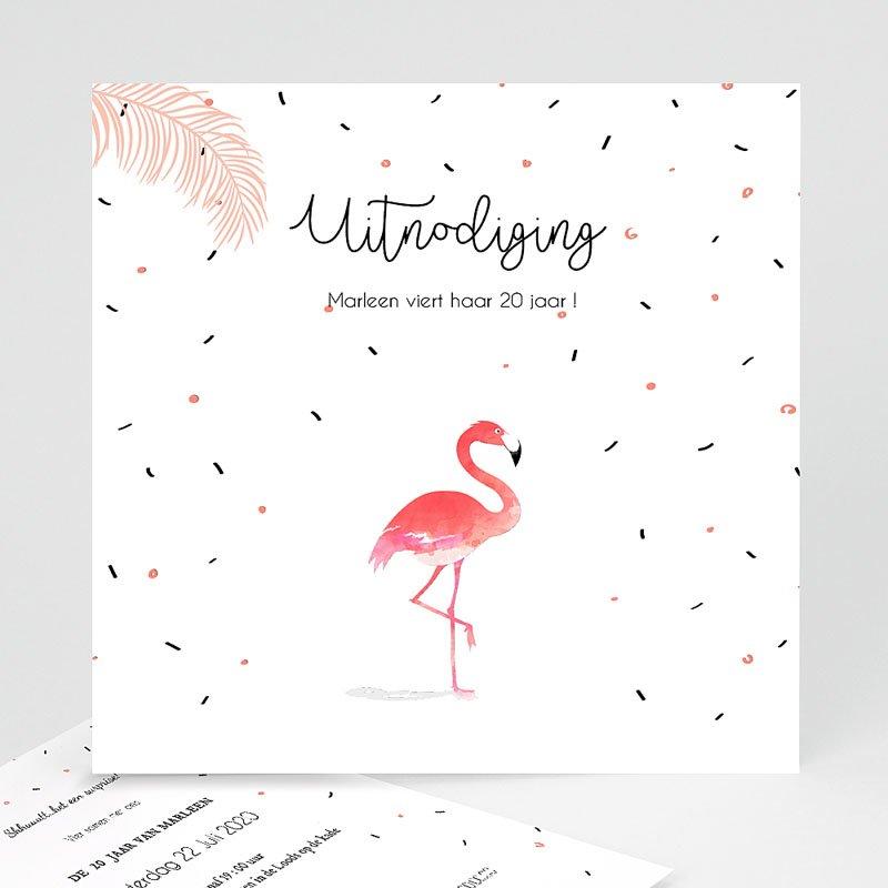 Verjaardagskaarten volwassenen Let's flamingle