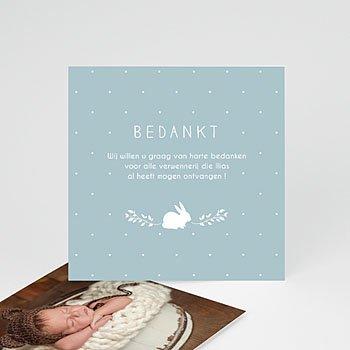 Bedankkaartje geboorte zoon Vintage Konijn