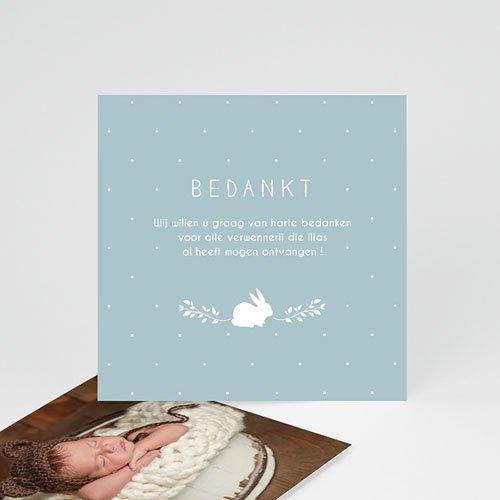 Bedankkaartje geboorte zoon - Vintage Konijn 54353 thumb