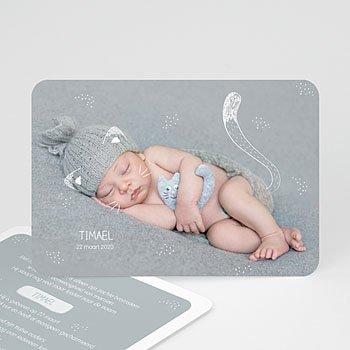 Geboortekaartje jongen - Baby Kitten - 0