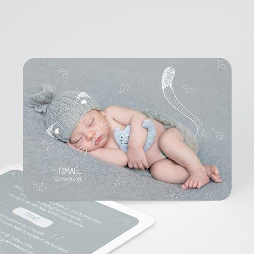Geboortekaartje jongen - Baby Kitten 54424 thumb