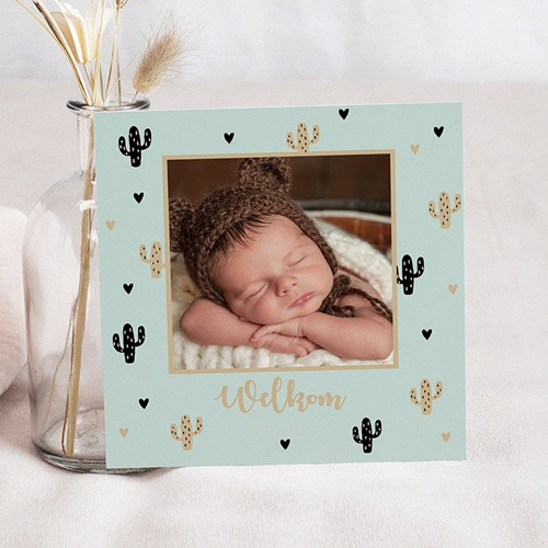 Geboortekaartje jongen - Cactusje 54969 thumb