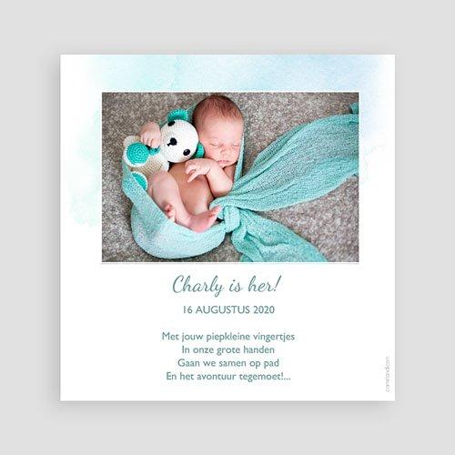 Geboortekaartje jongen - Droom van jou 55463 thumb