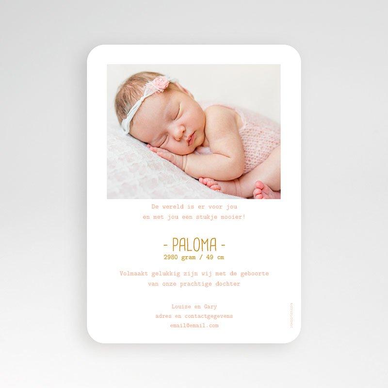 Geboortekaartje meisje - Once Upon a Girl 55578 thumb
