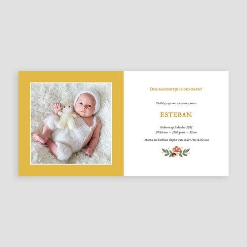 Geboortekaartje jongen - Herfst Thema 55587 thumb