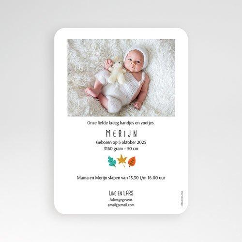 Geboortekaartje jongen - Eekhoorn in de Herfst 55753 preview