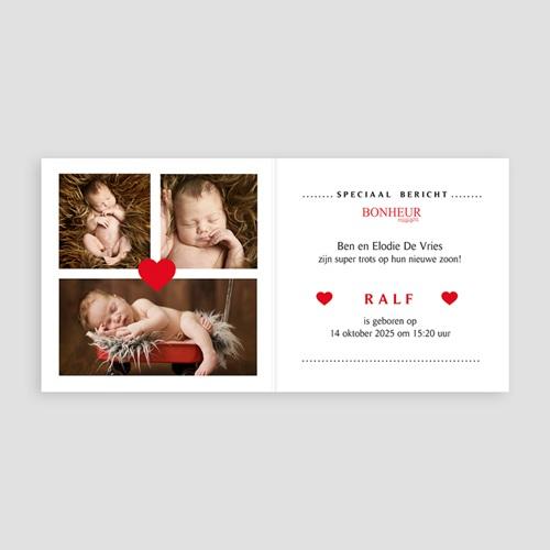 Geboortekaartje meisje - Geboortetijdschrift 55854 preview