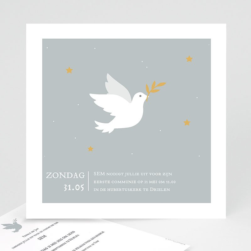 Uitnodiging communie jongen Holy Spirit Grijs