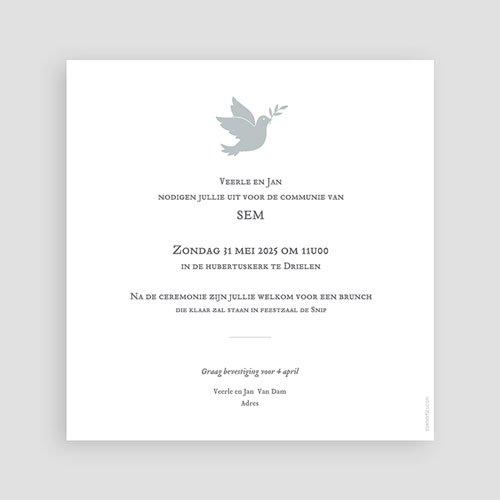 Uitnodiging communie jongen Holy Spirit Grijs pas cher