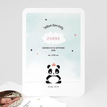 Geboortekaartje meisje - Panda Girl - 0