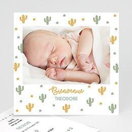 Geboortekaartje jongen Cactusland