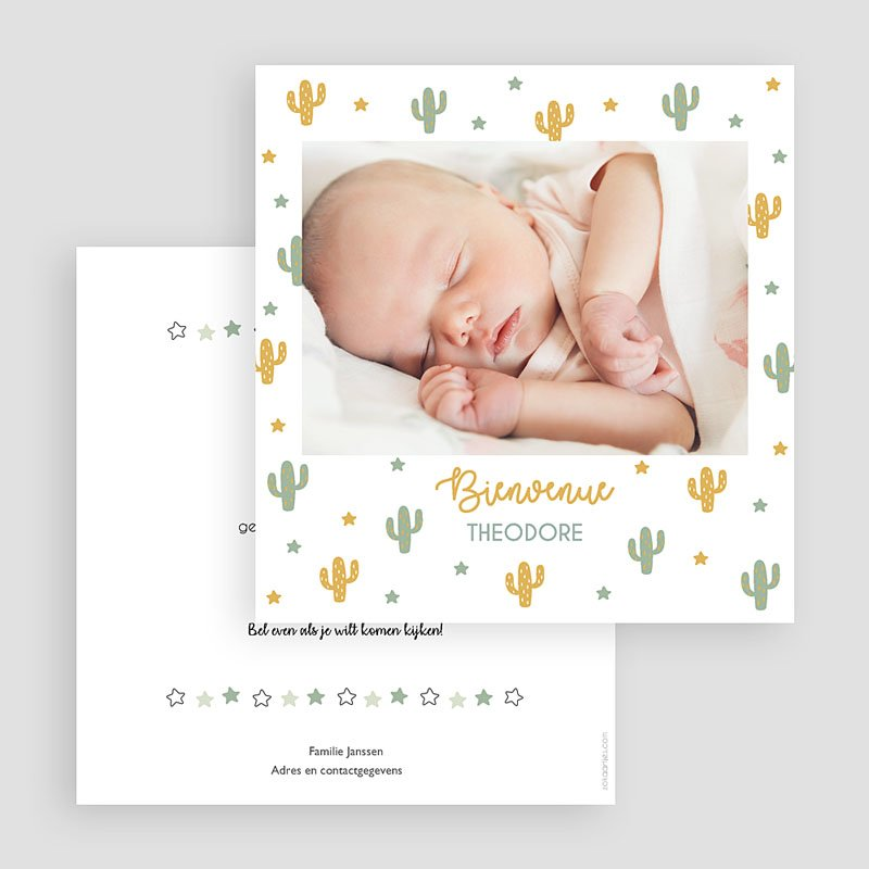 Geboortekaartjes Jongen Cactusland gratuit