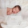 Geboortekaartjes Jongen Aquarel en veertjes