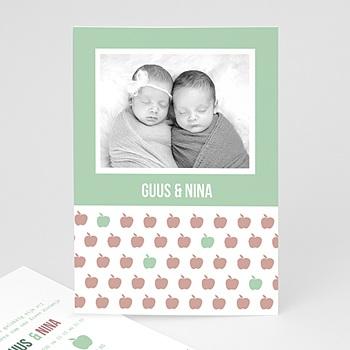Geboortekaartjes tweelingen - Mini Appeltjes - 0