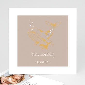Geboortekaartje meisje - Lieve Walvis - 0