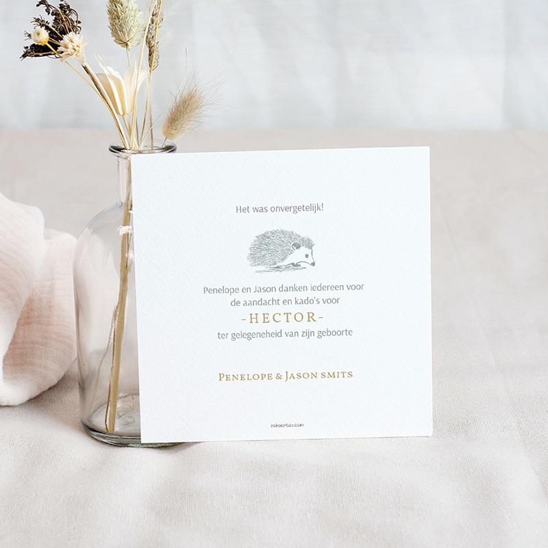 Bedankkaartje geboorte zoon - Kleine Egel & Goud 63286 thumb