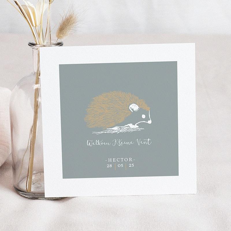 Geboortekaartjes met Dieren Egeltje & Goud