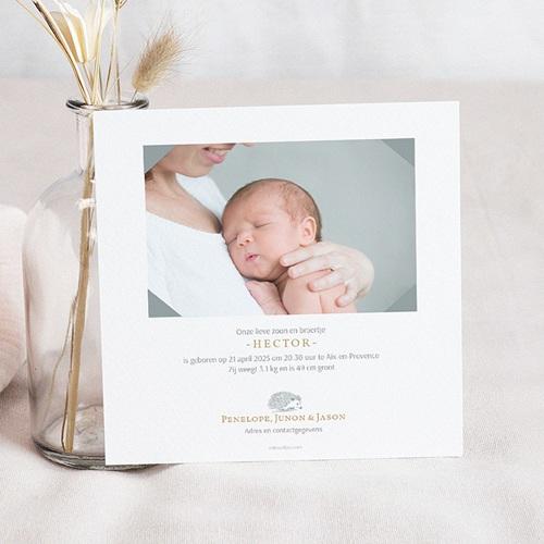 Geboortekaartjes met Dieren Egeltje & Goud pas cher