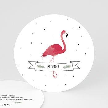 Bedankkaarten geboorte dierenmotief - Flamingo girl - 0
