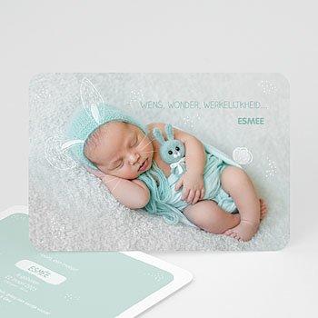 Geboortekaartje jongen - Lief konijntje - 0