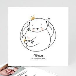 Aankondiging Geboorte beren familie