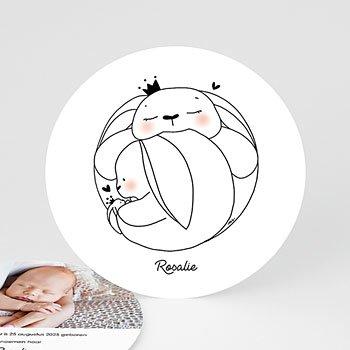 Geboortekaartje meisje - Konijntjes Familie - 0