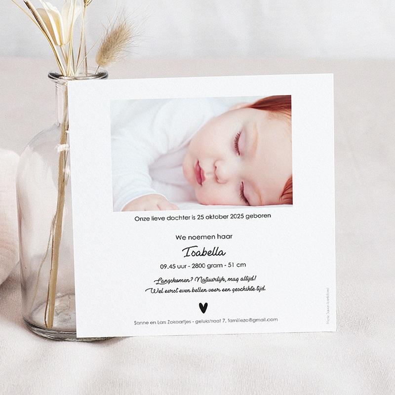 Geboortekaartjes met Ooievaar Ooievaar pas cher