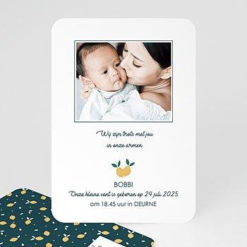 Geboortekaartje jongen - Lemon Tree - 0